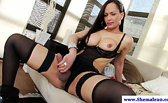 Big tit solo shemale in lingerie masturbates in high def